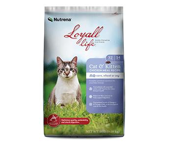 Loyall-Cat-&-Kitten