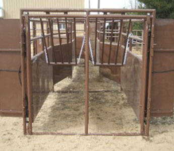 BLATTNER CROWD ALLEY 20INCH NO BACK GATE