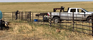 high-plains-cattle-supply-preferred-fencing-companies