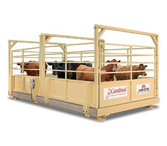 Cardinal Scale MFG Harvester Livestock Scale