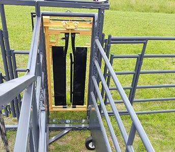 BUILT IN PALPATION DOOR