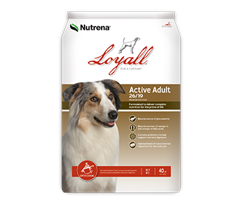 Loyall Active Adult