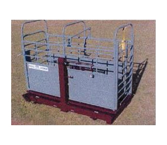 WW Livestock Systems Paul Scale 304S Livestock Platform Scale
