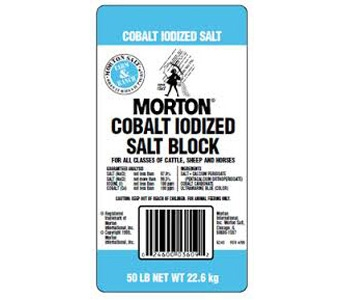 Morton Cobalt Iodized Salt Block
