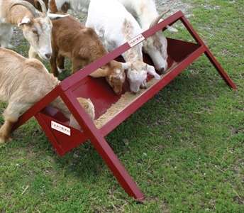 Tarter Goat Trough Feeder