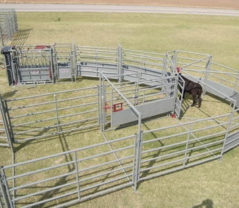 WW Livestock Systems 210 Tub System