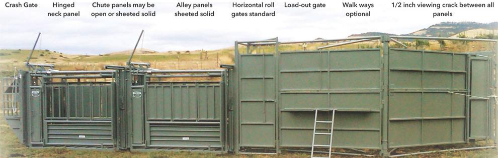 Pearson Livestock Handling Bison Handling System