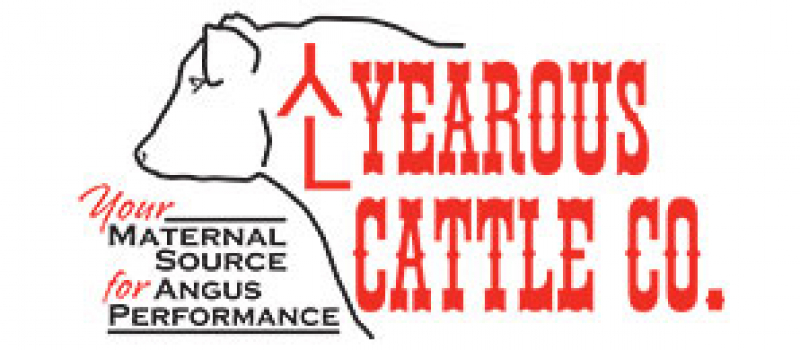 yearous cattle company